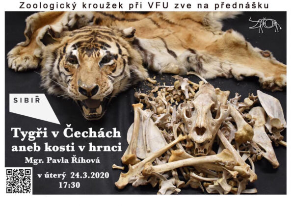 přednáška - Velká kauza tygrů